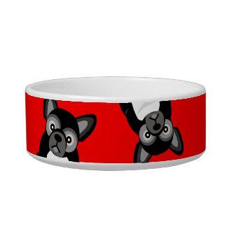 Het zwarte Franse Leuke Puppy Frenchie van de Voerbakje
