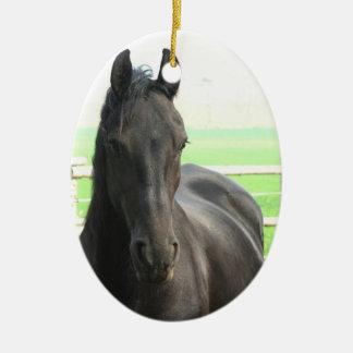 Het zwarte Friesian Ornament van het Paard