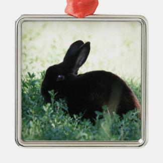 Het Zwarte Konijntje van Lil Zilverkleurig Vierkant Ornament
