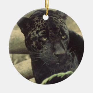 Het zwarte Ornament van de Panter