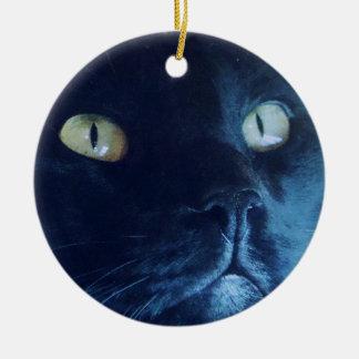 Het zwarte Ornament van het Gezicht van de Kat