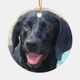 Het zwarte ornament van Labrador