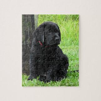 Het zwarte Puppy van Labrador - de Dagen van het Legpuzzel
