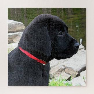 Het zwarte Puppy van Labrador - Weinig Rode Kraag Legpuzzel