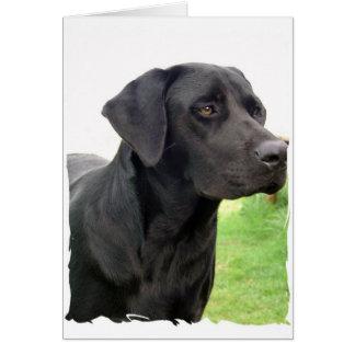 Het zwarte Wenskaart van de Labrador
