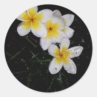 Het zwemmen in de Producten van Mulit van de Regen Ronde Stickers