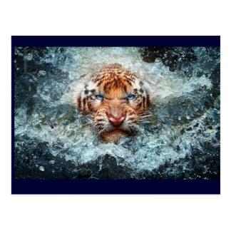 Het Zwemmen van Tigar Briefkaart