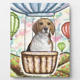 - hete haarballon fotoplaat