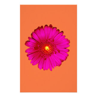 Hete Roze Gerbera Daisy op Sinaasappel Briefpapier