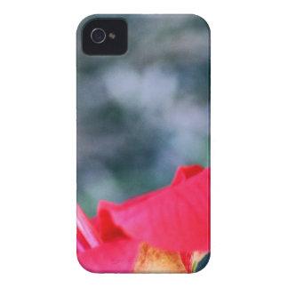 Hibiscus 4 iPhone 4 cases