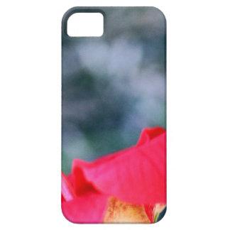 Hibiscus 4 iPhone 5 covers