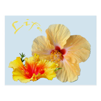 ☼ HIBISCUS, Bloem van hartstocht ☼ Briefkaart
