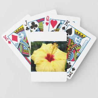 Hibiuscus Poker Kaarten