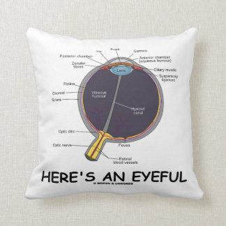 Hier is een Eyeful (de Humor van de Anatomie van Sierkussen