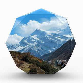 Himalayagebergte zet de Zomer van de Reis van Prijs