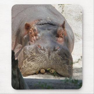 Hippo_20171101_by_JAMFoto Muismatten