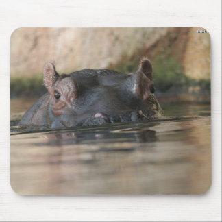 Hippo Mousepad Muismat