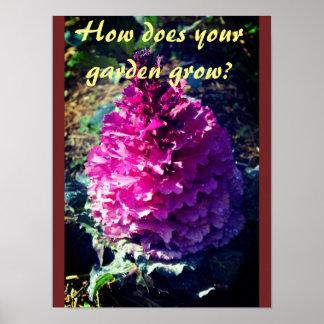 Hoe groeit Uw Tuin? Poster
