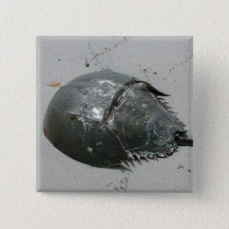 Hoefijzer Krab Vierkante Button 5,1 Cm