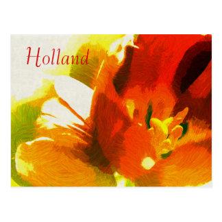 Holland, het Briefkaart van de Tulpen van de Lente