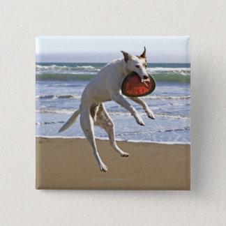 Hond die een frisbee op strand springen te vangen vierkante button 5,1 cm