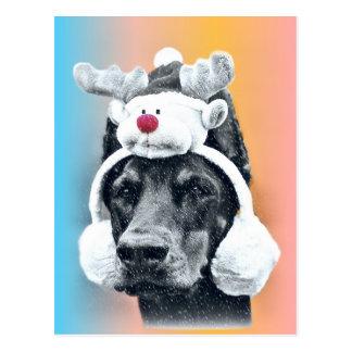Hond die een Pet van het Rendier dragen Briefkaart