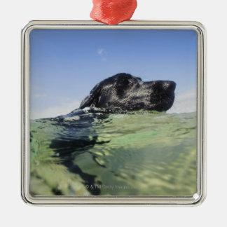 Hond die in water zwemt zilverkleurig vierkant ornament