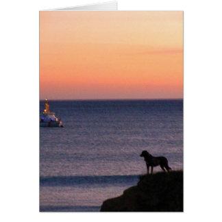 Hond en Boot: Gelukkig Schot Wenskaart
