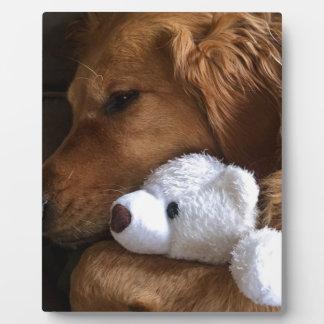 hond fotoplaat