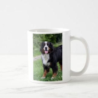 Hond I van de Berg van Bernese de mok van het