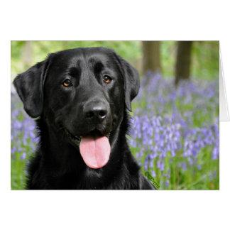 Hond in het Wenskaart van Klokjes