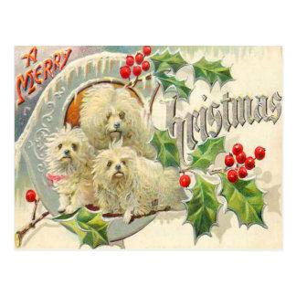 Honden Briefkaart