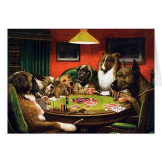 Honden die pook - grappige honden spelen - briefkaarten 0