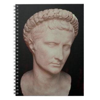 Hoofd van Caesar Augustus Notitieboeken