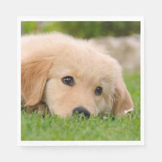 HoofdFoto van de Hond van de Dromen van het Puppy Wegwerp Servetten