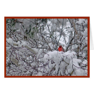 HoofdKerstkaart 6211-2 van de sneeuw Kaart