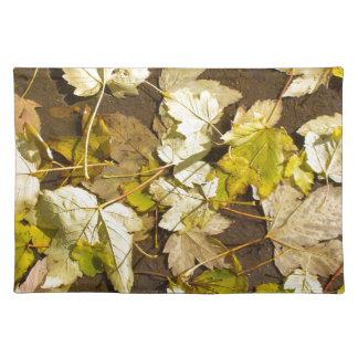 Hoogste uitzicht van bladeren van een de natte de placemat