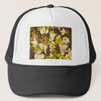 Hoogste uitzicht van bladeren van een de natte de trucker pet
