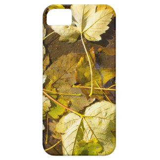 Hoogste uitzicht van de natte herfstbladeren barely there iPhone 5 hoesje