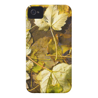 Hoogste uitzicht van de natte herfstbladeren iPhone 4 hoesje