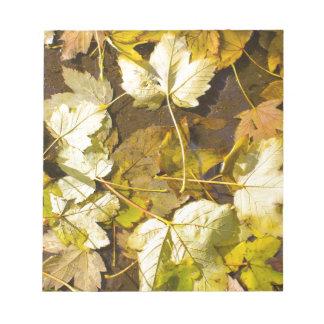Hoogste uitzicht van de natte herfstbladeren notitieblok