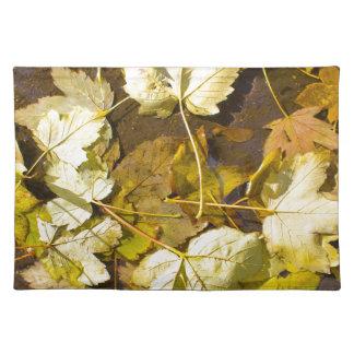Hoogste uitzicht van de natte herfstbladeren placemat