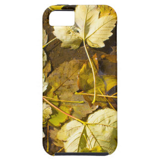 Hoogste uitzicht van de natte herfstbladeren tough iPhone 5 hoesje