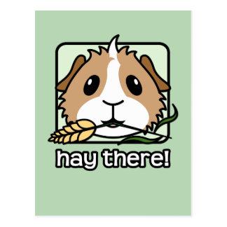 Hooi daar! (Proefkonijn) Briefkaart