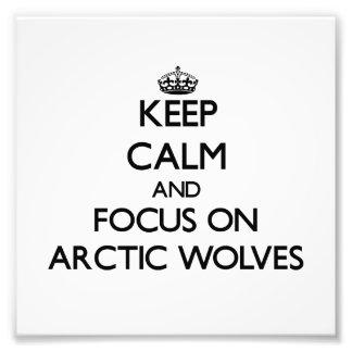 Houd kalm en concentreer me op NoordpoolWolven