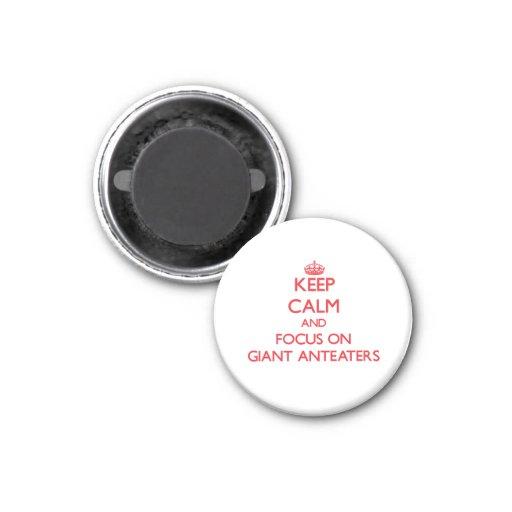 Houd kalm en concentreer me op ReuzeMiereneters Magneet