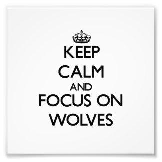 Houd Kalm en concentreer me op Wolven