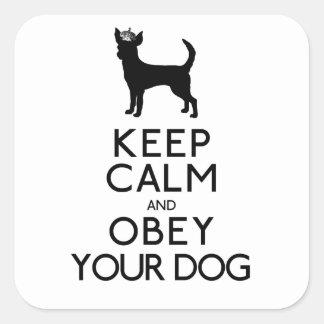 """""""Houd Kalm en voer Uw Hond uit """" Vierkante Sticker"""