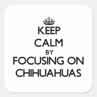 Houd Rust door zich op Chihuahuas te concentreren Vierkante Sticker