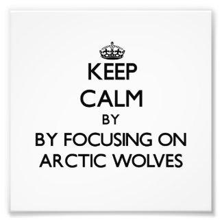 Houd rust door zich op NoordpoolWolven te concentr Footprint
